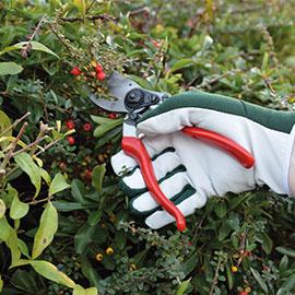 Garden Tools Accessories