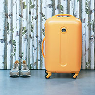 Luggage & Accessories