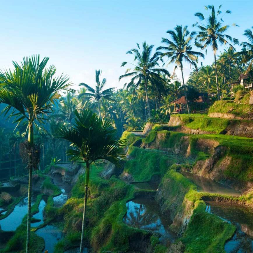 A Luxurious Balinese Honeymoon, 14 days from  €2,338